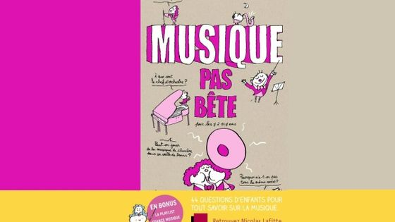 Photo - montage couv Musique pas bête Nicolas Lafitte MEA 603*380