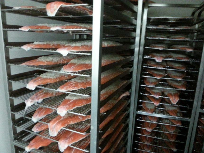 Avant le fumage, le salage du saumon