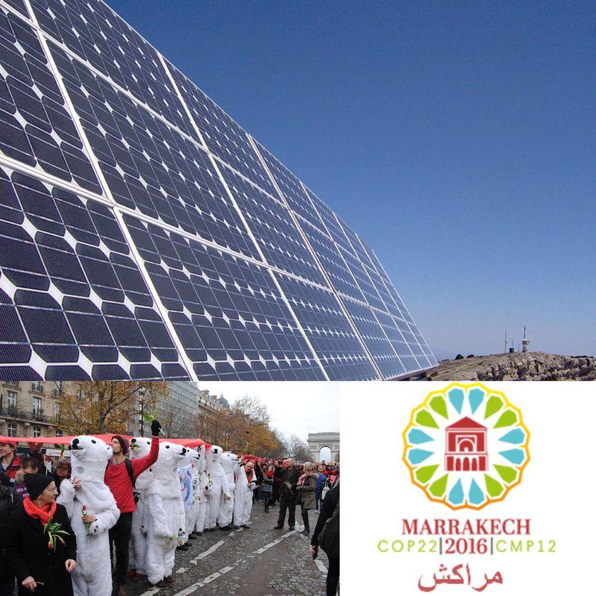 Energie solaire, Espagne, Armée d'ours polaires, COP 21 à Paris, la COP 22 au Maroc