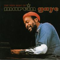 « The Very Best of Marvin Gaye » Inner City Blues (Make Me Wanna Holler)