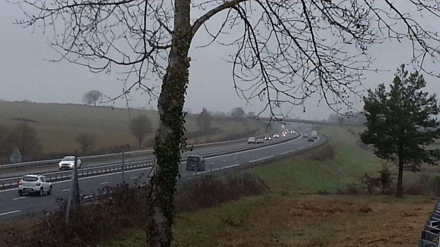 Faut-il un nouveau passage à grand gibier sur l'A71 ?