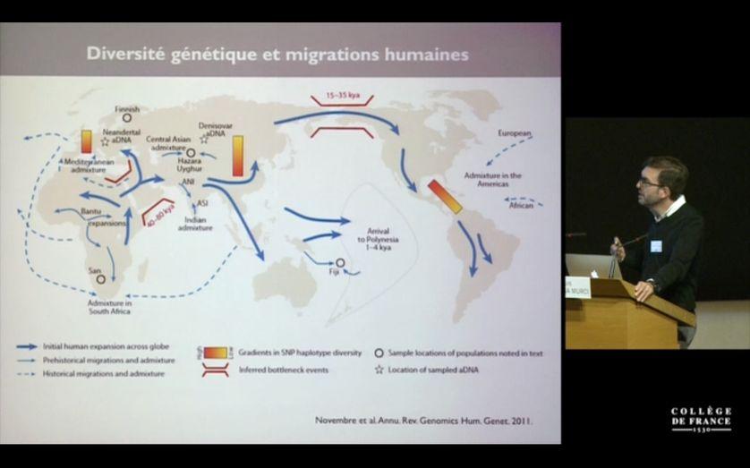 Lluis Quintana Murci explique les différentes grandes vagues de migrations de l'espèce humaine