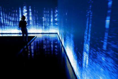 Exposition Le Grand Orchestre des Animaux de Bernie Krause qui présente à la Fondation Cartier dans une pièce obscure des paysages sonores de différents écosystèmes avec une projection des ondes sur trois des quatre murs.