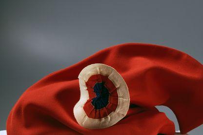Bonnet phrygien avec la cocarde tricolore, symbole de la révolution française