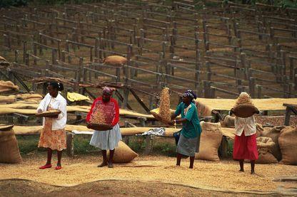 Femmes kenyanes près de Méru