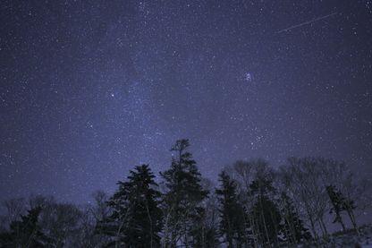 Et si les étoiles froides pouvaient abriter la vie ?