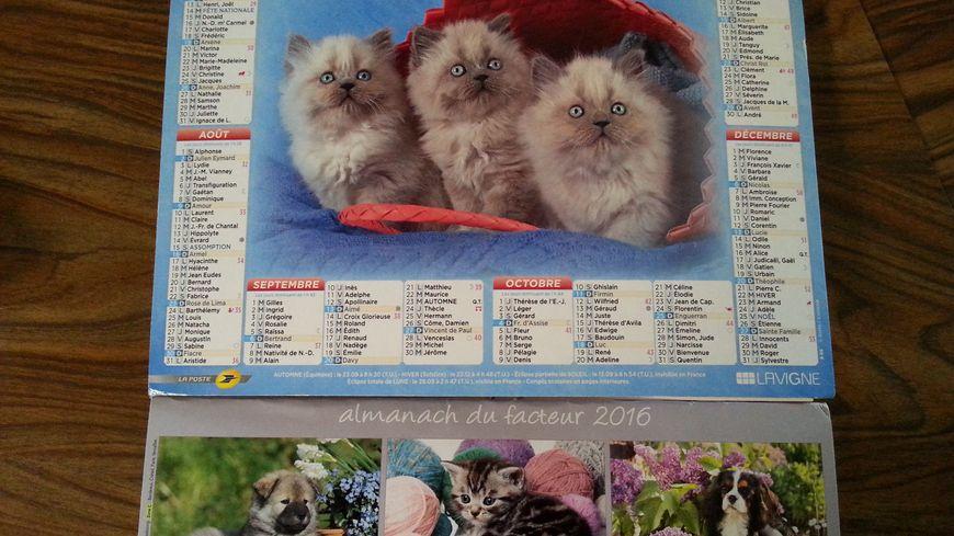Les calendriers avec des animaux de compagnie plaisent toujours autant selon les facteurs