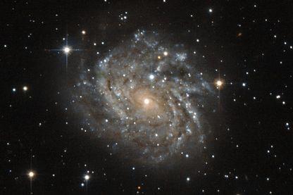 La Galaxie J04542829-6625280, ou LEDA 899