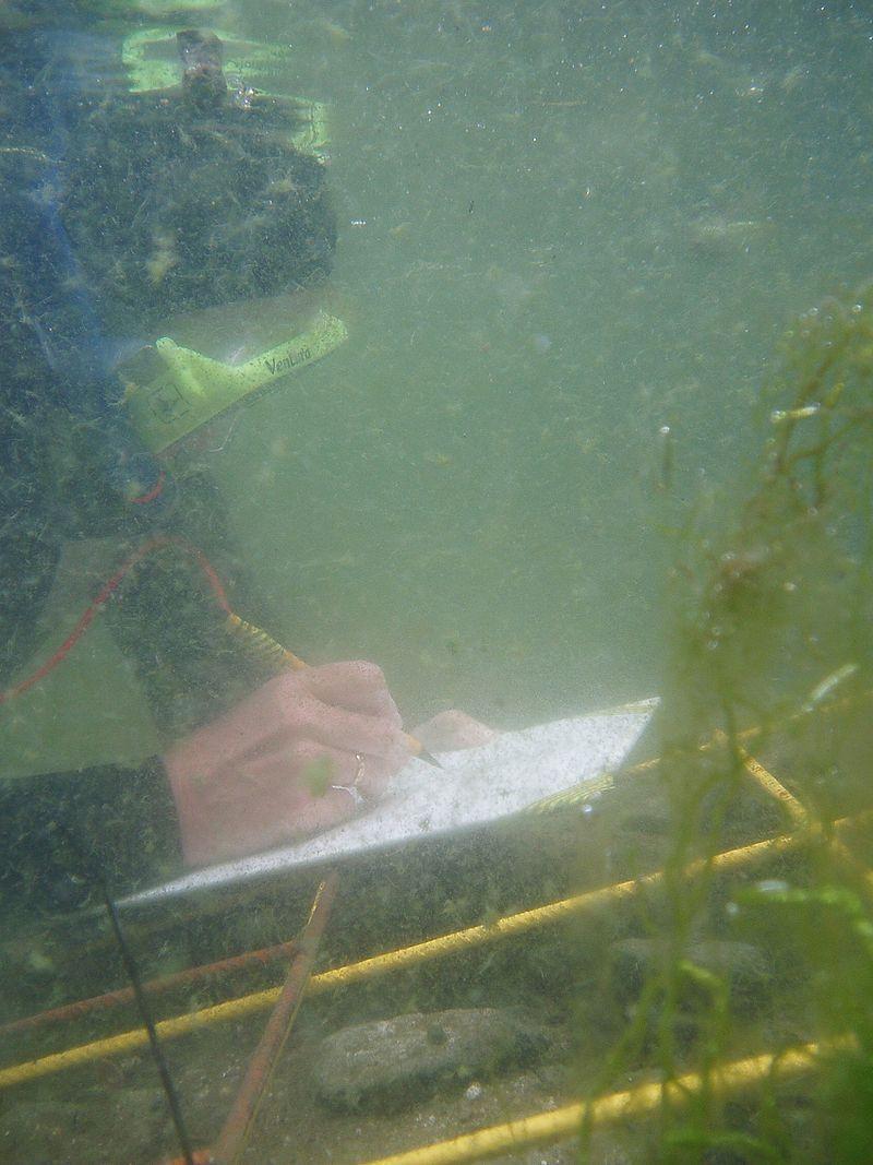 Relevé archéologique sous-marin