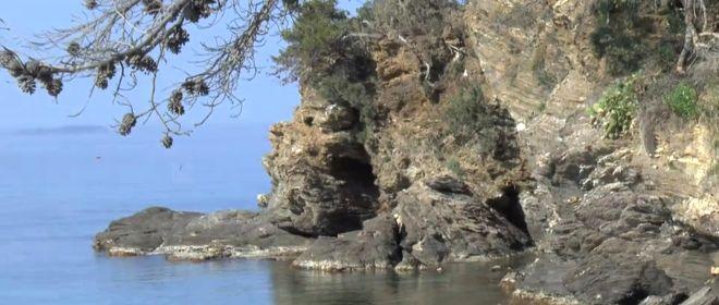 Biodiversité et société en région méditerranéenne