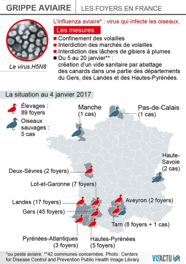Grippe Aviaire : la situation au 4 janvier 2017