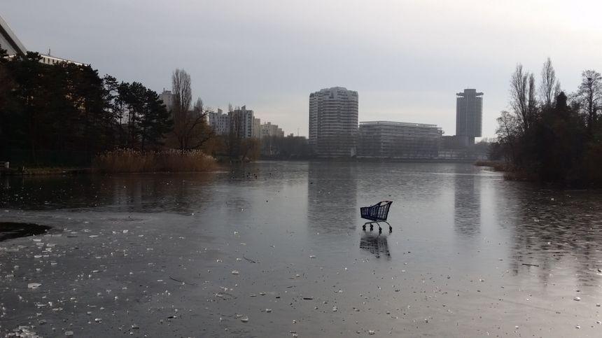 Sur la glace, les agents municipaux ont ramassé une vingtaine de caddies ces derniers jours