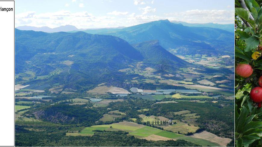 Le GAEC du Val Alpin, à Lagrand, dans les Hautes Alpes, une exploitation respectueuse de l'environnement.