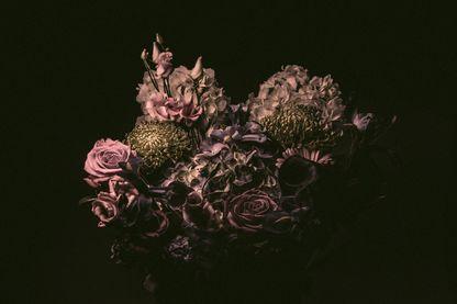 Les roses de la Saint-Valentin, dangereuses pour la santé ?