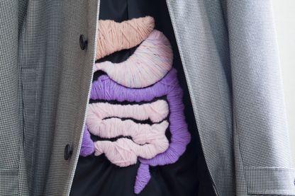 Le rôle du microbiote intestinal sur notre bien-être