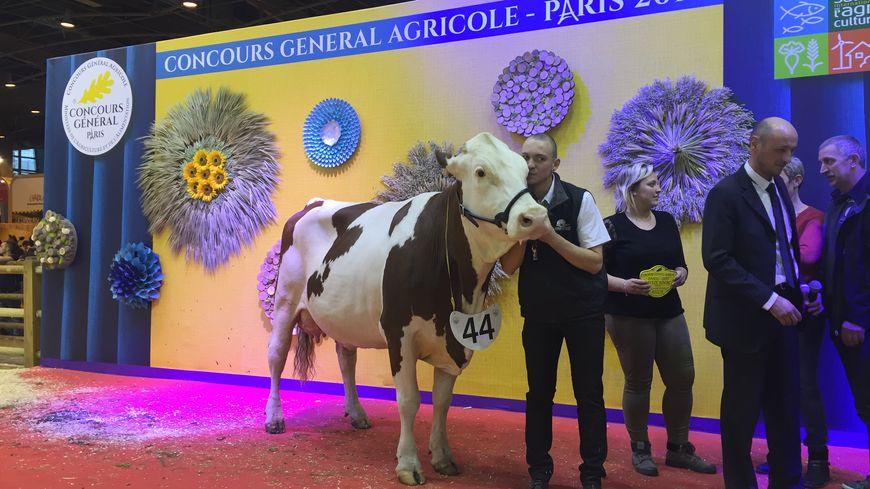 Gribouille et son éleveur Tony Trouf du GAEC de la Corvée dans le Doubs