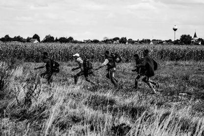 Des migrants passant à travers les champs