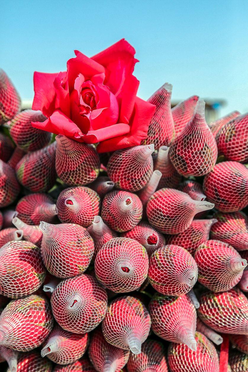 Chine, St Valentin