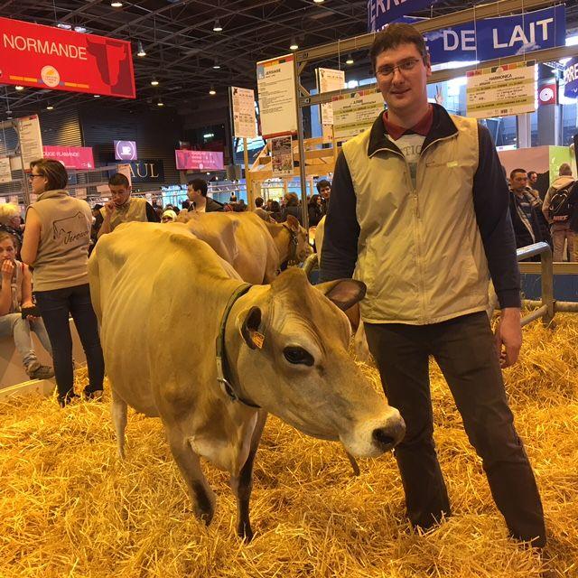Benoît Guioullier et sa vache jersiaise Imitable