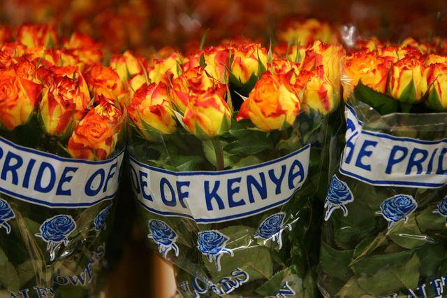La plus grande vente de fleurs se prépare pour la Saint-Valentin