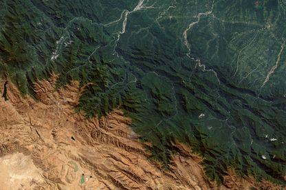 En Bolivie, la forêt perd chaque année 200 000 hectares, l'équivalent de 27 fois Paris