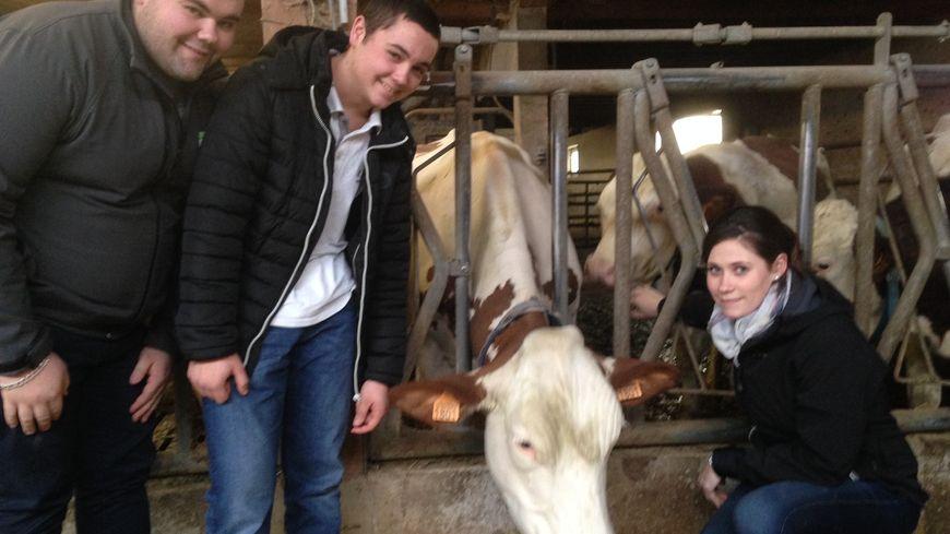 Mickaël, Mathieu et Manon entourent Iroise leur vache de 3 ans chez eux à Voires (Doubs)