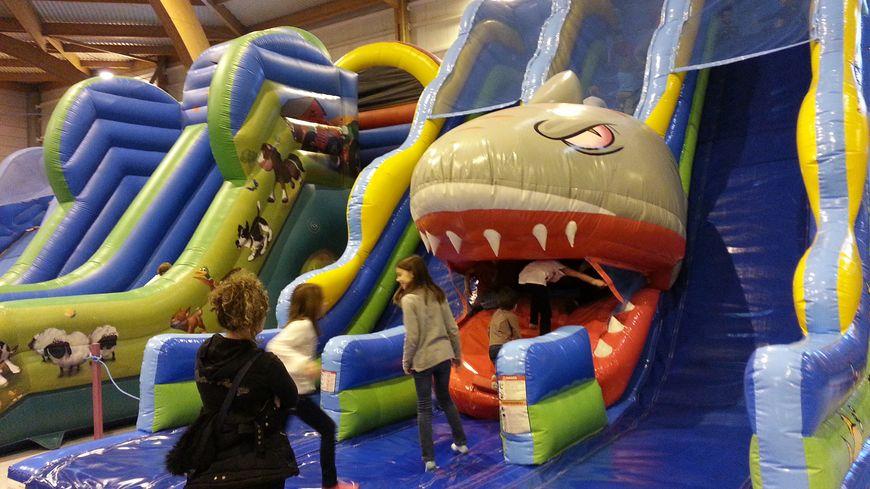 Les enfants peuvent se jeter dans la gueule du requin
