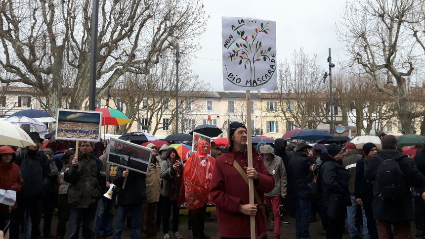 Pour les manifestants cette centrale est synonyme de déforestation