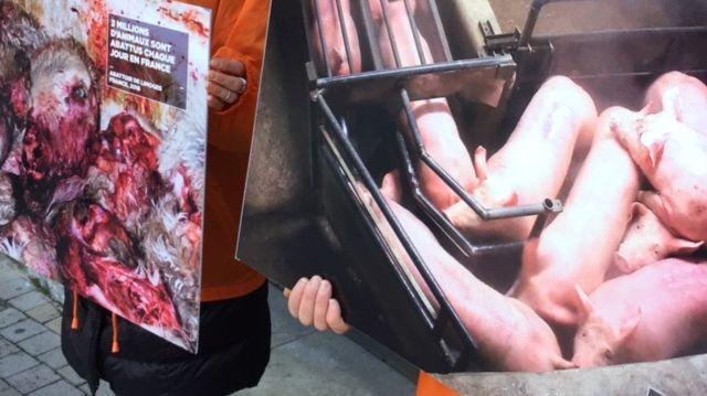 Action de l'association L214 à Bourges contre la maltraitance des animaux dans les abattoirs