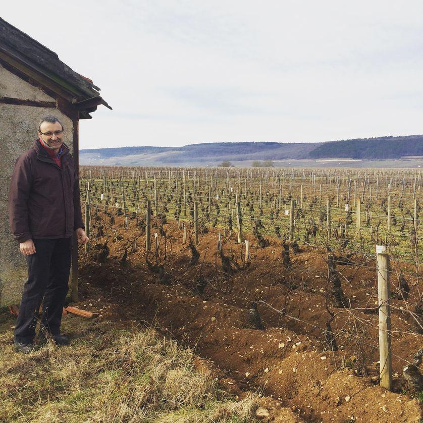 """Nicolas Rossignol: """"Le prix des vignobles à Gevrey-Chambertin a augmenté de plus de six fois en vingt ans"""""""