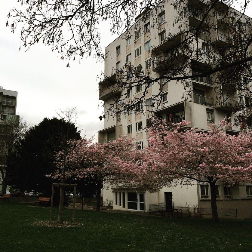 Quartier du Mont-Mesly, Créteil.