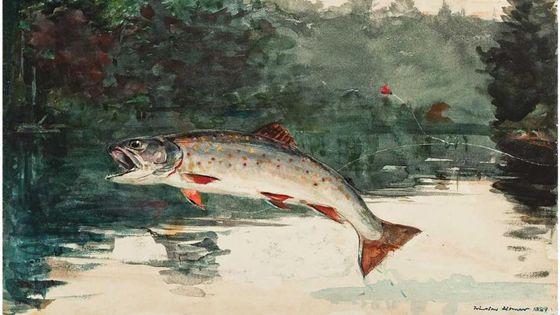 Saut d'une truite aquarelle de Winslow Homer
