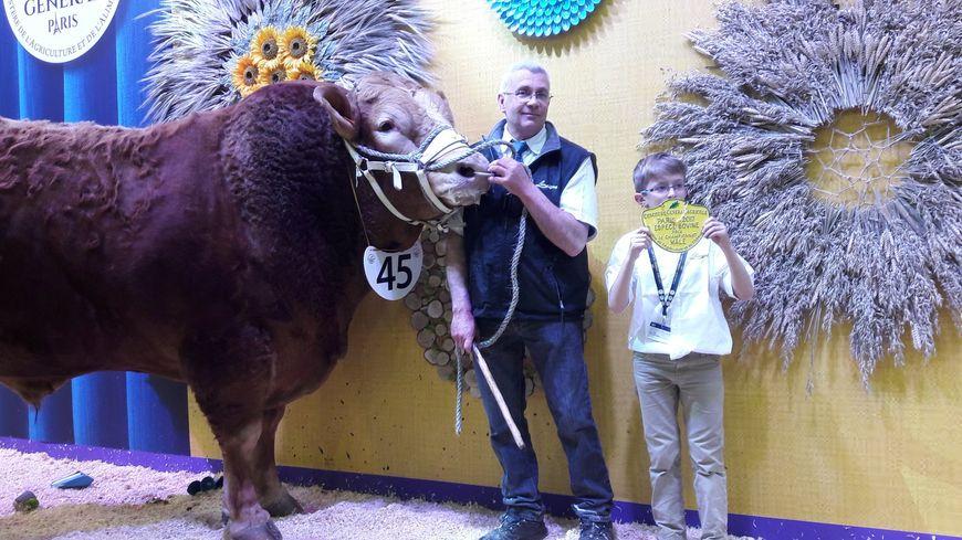 """""""Géant"""" du Gaec des Myosotis, dans le Cantal, remporte le prix de championnat mâle au concours de la race limousine au Salon de l'Agriculture 2017"""