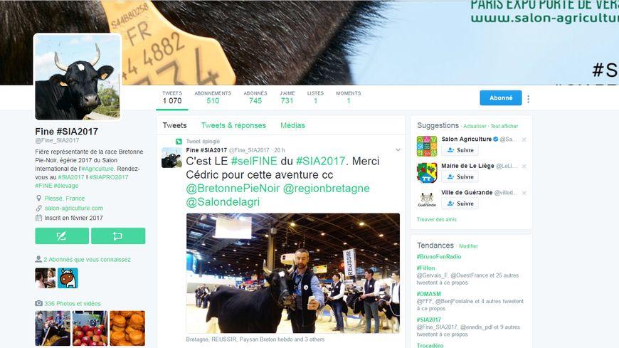 Fine, la vache de Plessé, est très active sur Twitter