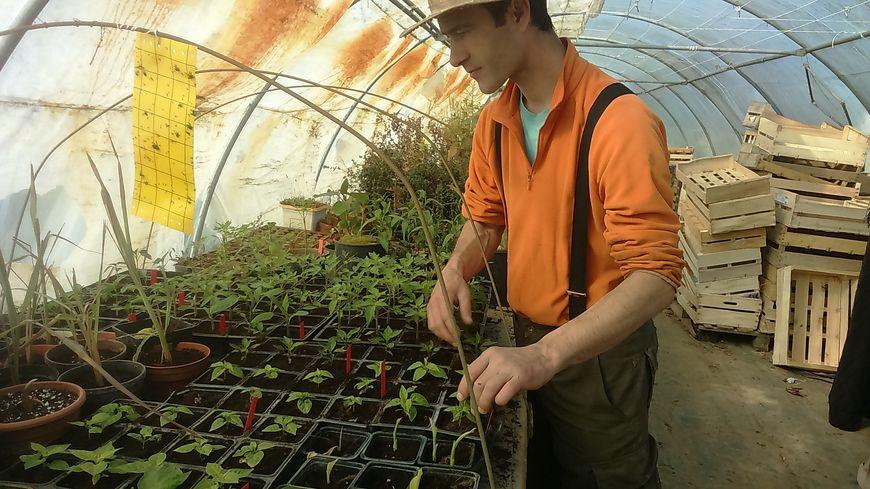 Thomas Jagu est installé depuis six ans à Vendel et fonctionne depuis le début en lutte biologique