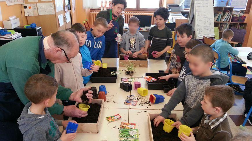 C'est la période des semis pour ces élèves de l'école de Précy-sur-Vrin (Yonne) avec des bénévoles de l'association Romarin