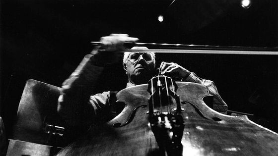 Mstislav Rostropovich, en 1950.
