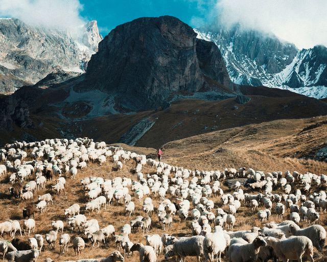 Bérengère, 27 ans et Aimé, 3 mois, sur la montagne d'Aussois à 2320 mètres d'altitude. « Le choix à Bérengère »