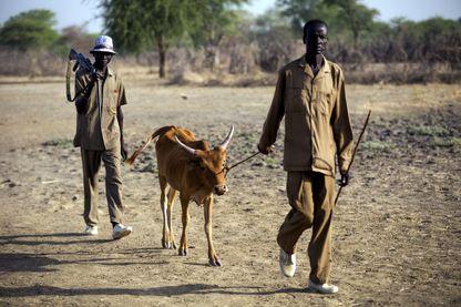 Le Sud-Soudan, la plus jeune nation du monde formée après avoir été séparé du nord en 2011, a déclaré la famine dans certaines parties de l'Unité, disant que 100.000 personnes sont affamées et qu'un autre million est au bord de la famine.
