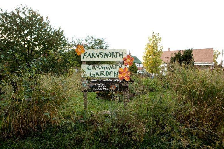 Farnsworth Community Garden // communauté d'agriculture urbaine à Detroit