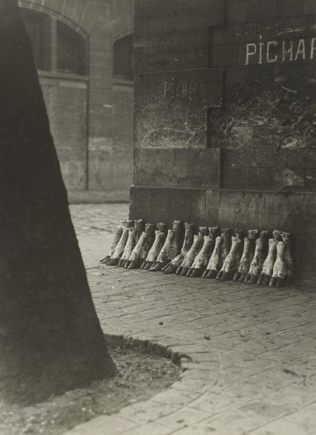 Aux abattoirs de la Villette, 1929