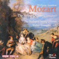 Quintette à cordes n°1 en Si bémol Maj K 174 : Adagio