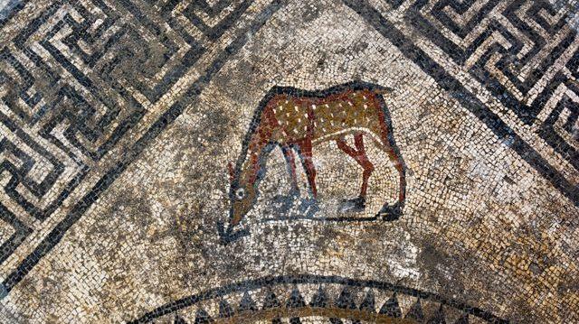 La mosaïque découverte à Uzès