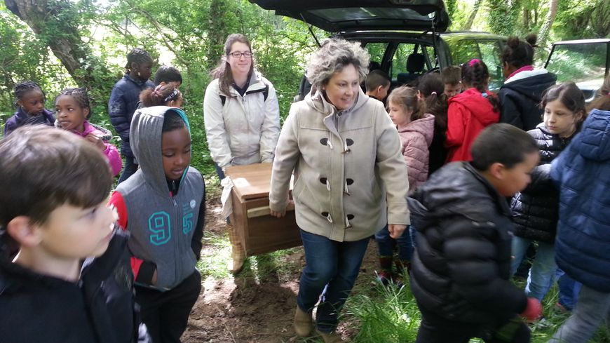 Deux hérissons ont été relâchés par l'association Atoupic, sous les regards émerveillés d'enfants de Vierzon