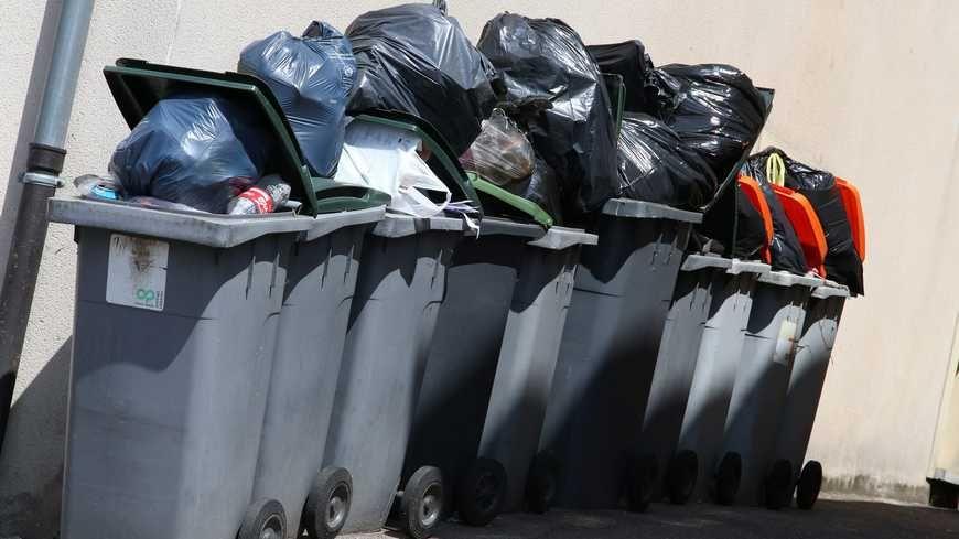 Des poubelles (Illustration)