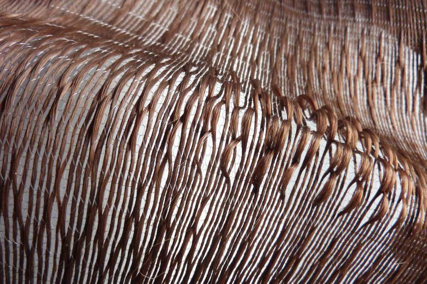 Protocole tricotage de cheveux en trame