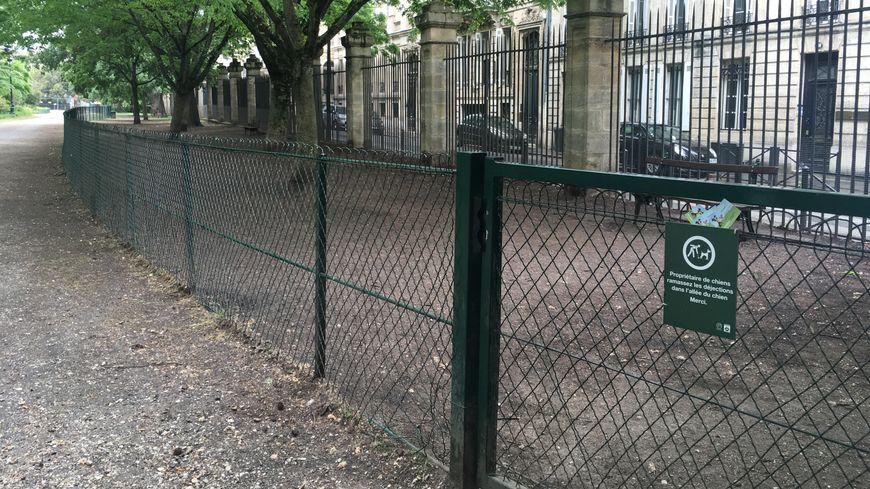 L'allée pour chien du Jardin public à Bordeaux.
