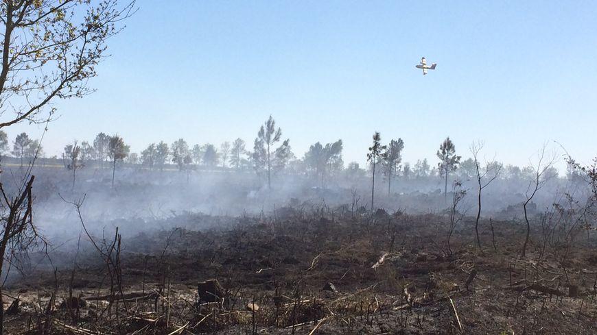 Les canadairs continuaient à survoler l'incendie pour éviter toute reprise de feu