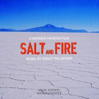 Salt and fire : Reunion - ERNST REIJSEGER