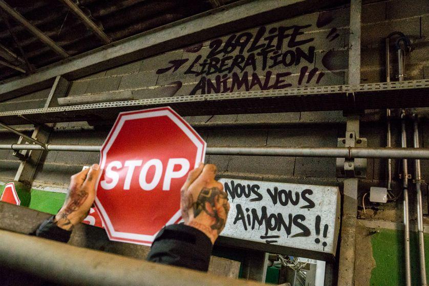 """Manifestation de l'association """"269 Life Libération Animale"""""""